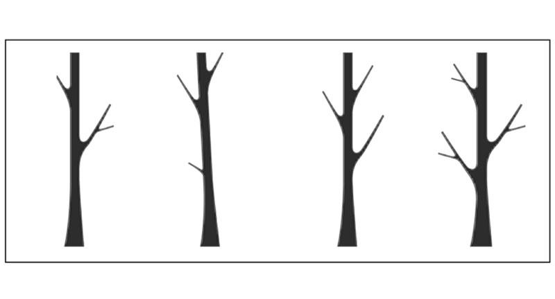 Pattern E 31
